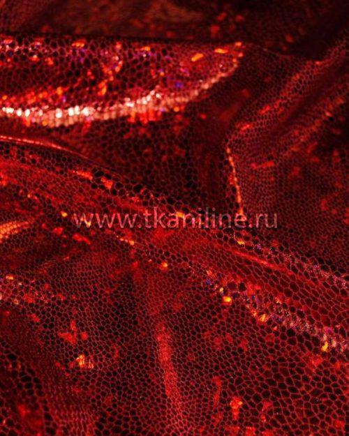 Голограмма-красная-690530-Д1-№5