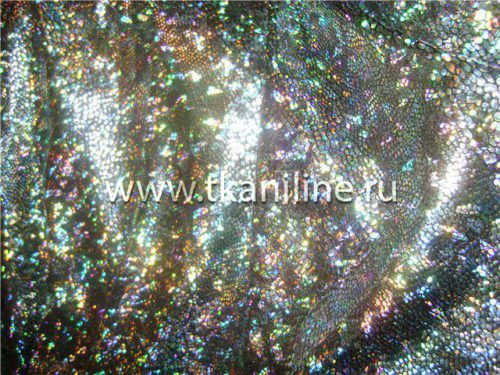 Голограмма-серебро-на-черном-690543-№2