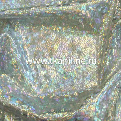 Голограмма-серебро-690530-Д1-№10